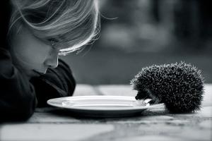 girl hedgehog